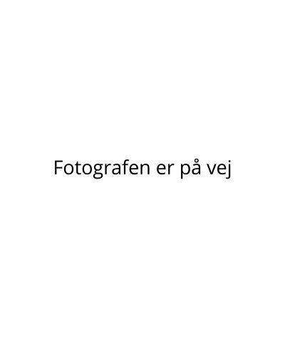Grotrian-foto-kommer